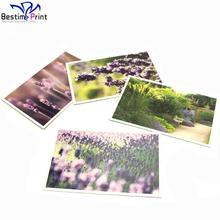 Full Color Offset Printed printing service cards card postcards in low price