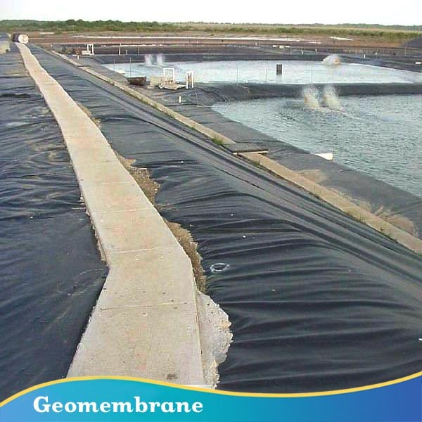 Chemical Resistant And Waterproofing Hdpe Pond Liner Buy