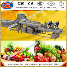 Full automatic stainless steel fruit and vegetable washing line