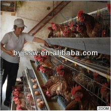 Wooden Chicken Layer Cage For Live Chicken Cage To Transport