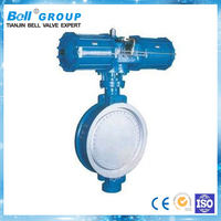 Pneumatic wafer butterfly valve with positioner and air filter