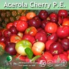 Acerola Cherry P.E. / Acerola Cherry Extract / Acerola Cherry Powder Extract (Natural Fruit Extract for your good health