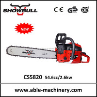 Professional easy starter CE approved chainsaw with walbro carburetor
