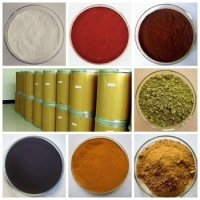 High Purity Epimedium Extract icariin 50% 60% 80% 98%