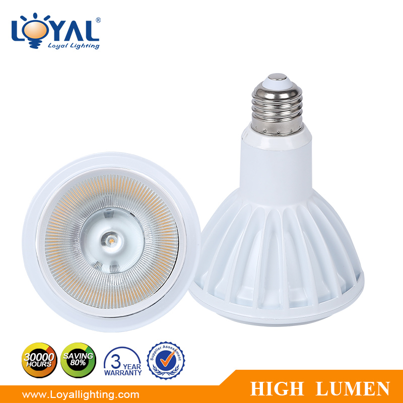 IP20 Aluminum high lumen par30 bridgelux cob 9w led par light