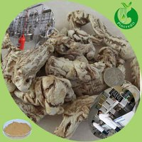 High Quality Chinese Angelica Extract Powder Angelica Polysaccharide