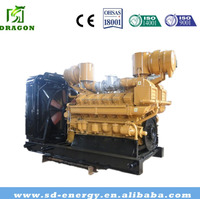 High Efficient Coal Bed Gas Generator China Factory Price