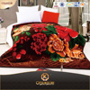 Polyester Span Made In Korea Double Bed Printed Mink Blanket