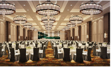 Hotel conference room Chinese style Carpet with golden color stripe