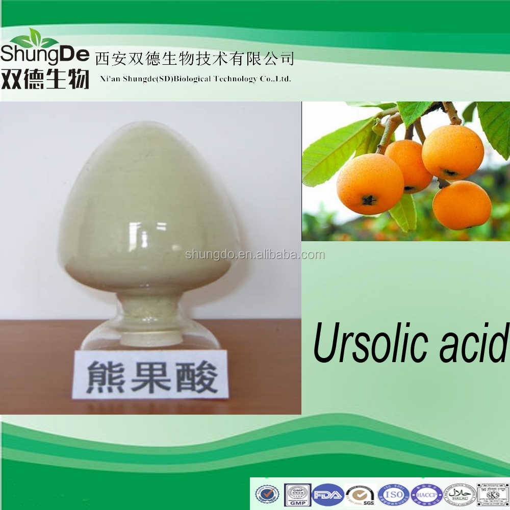 Natural loquat Extract Ursolic Acid powder/selfheal extract