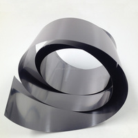 Factory Sell Cold Rolled Tantalum Strip