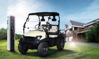 New Electric Vehicle UTV 4kw