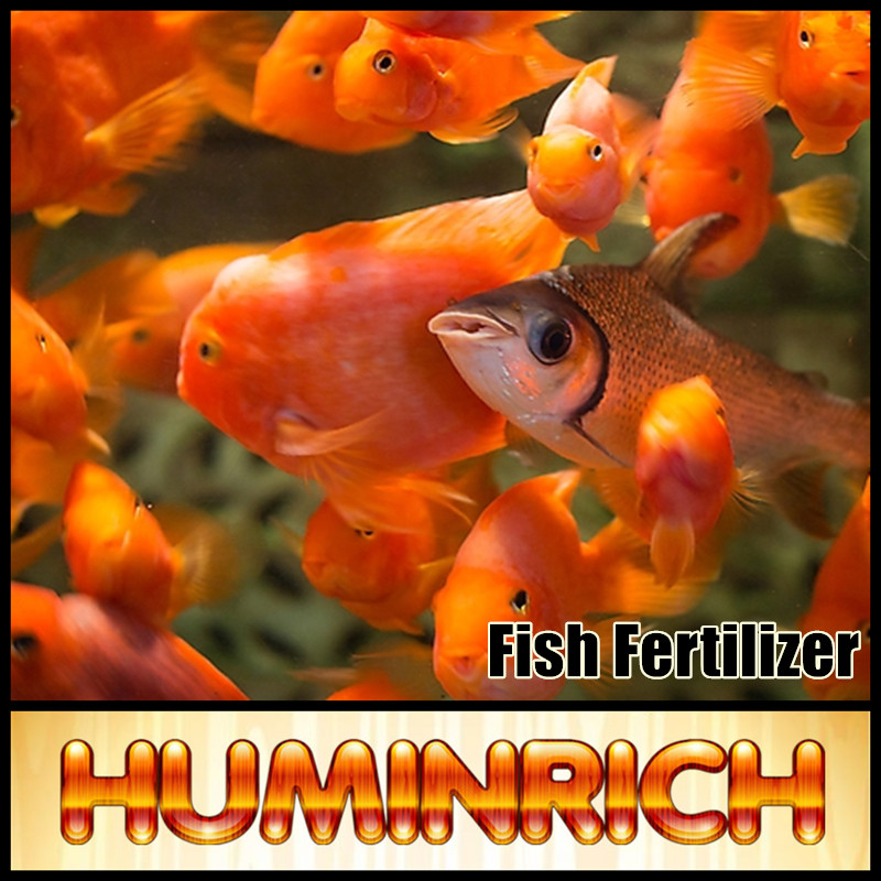 Huminrich Feed Additive SH9016-1 Sodium Humate Shiny Powder Fish Feed