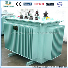 6kv-11kv Three-phase Full-sealed Distribution Transformer