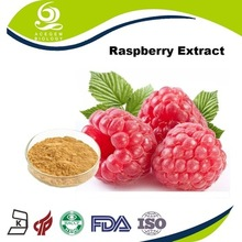 plant extracts diet supplement raspberry fruit extract prices 2017