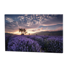 Wall Natural Scenery Art Contemporary Decorative Canvas Painting