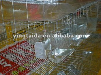 Wire Breeding Rabbit Cages