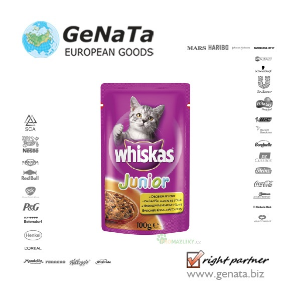 Whiskas Junior Sachets 100g