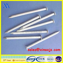 electro galvanized common wire nail/common iron wire nails/common nails without head