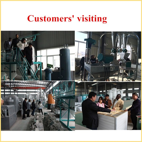 Pulse Bag Filter / Dust Collector / Pulse Bag Dust Catcher