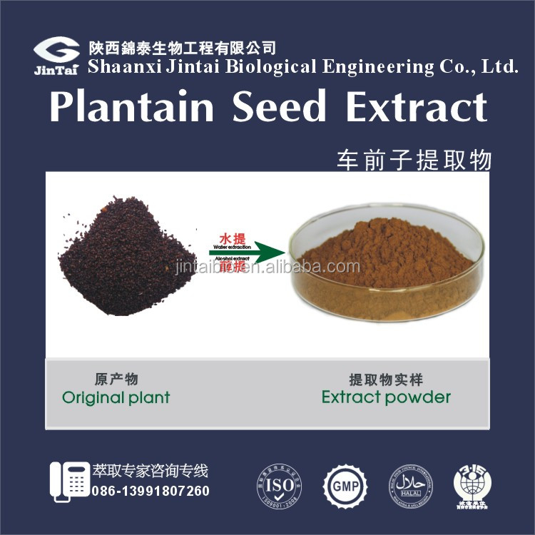 Plantago asiatica L. high quality 10:1 plantain seed extract