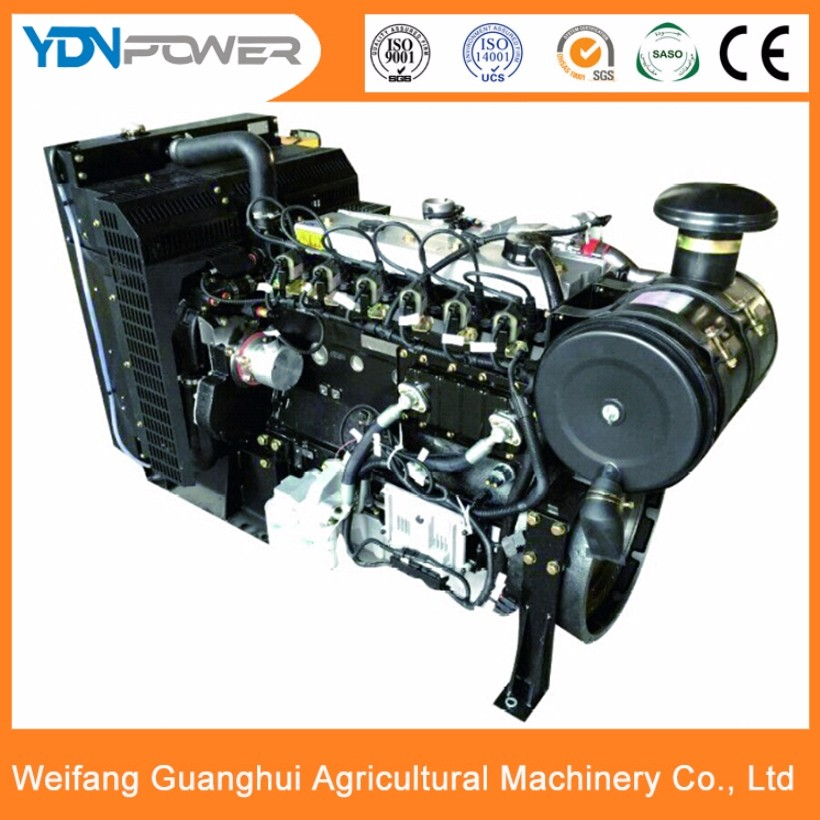 Yidaneng 80kw China biogas syngas generator engine for sale