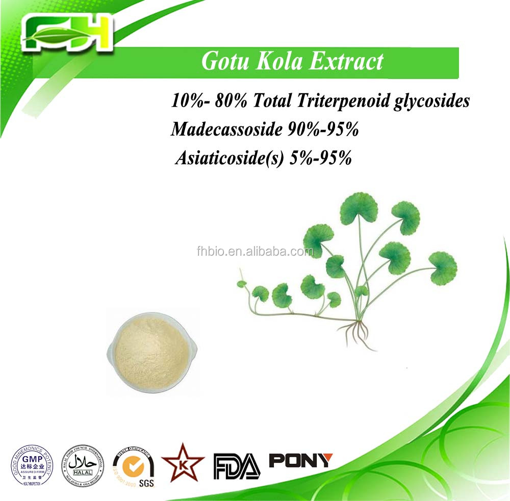 Hot selling 10%-90% Total Triterpenes,Centella asiatica extract,10%-40% Asiaticoside(s)