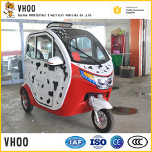 2015 hot selling cheap adult electric tricycle/2016 Hot selling !/3 wheel electric motor bike/ e-rickshaw gear driving with roof