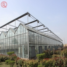 Best price backyard high tunnel glass greenhouse hydroponics farm