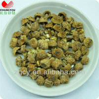 different kind mushroom cheap dried flowers