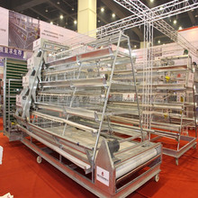 Hot Selling High Quality poultry farm Automatic Chicken Layer Cage