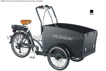 lithium battery 36V 9Ah three wheels family electric cargo bike/tricycle for sale in philippines cargo bike/cargobike UB9031E