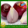 2018 china shandong red onion with low price