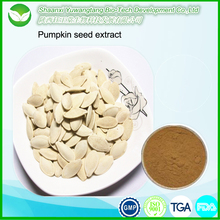 China factory supply high quality pumpkin seed extract/ pumpkin seed protein
