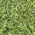 Super Quality Landscape Artificial Turf
