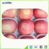 Red delicious apple fruit price from China with high quality
