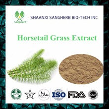Trade Assurance & top quality 7% Organic Silicon Pure Natural Equisetum arvense Horsetail Extract