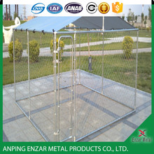 High Quality Professional Factory of Dog Cages