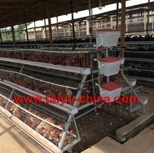 tanzania layer poultry farm chicken cage for sale