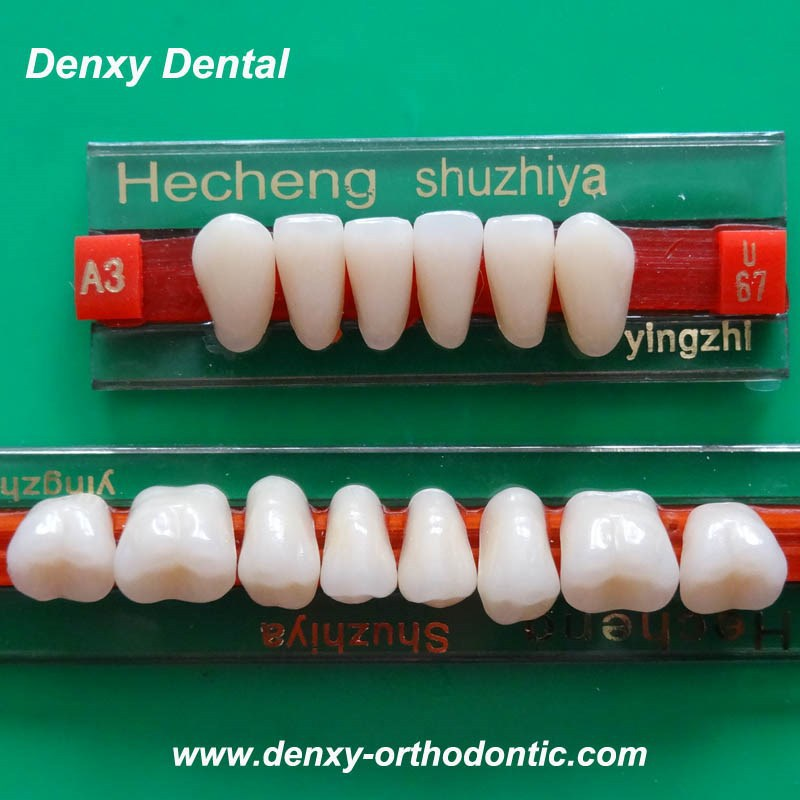 Economial and Beatiful palstic resin teeth Dental Artificial Teeth/Porcelain False Teeth