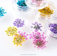 Stickers & Decals 3D Dry Flower, Mix 12 Color Decoration Real Dried Dry Flower for Nail Art Decoration ZX:GH744