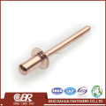 Sealed Type Copper Rivets
