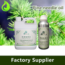 Factory Sale 100% Pure Natural Pine Needle Oil With Terpene Alcohols