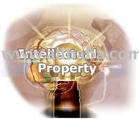 Sell Intellectual Property
