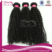Factory price kinky curly brazilian virgin hair brazilian braiding hair