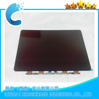 "New For Macbook Pro 13"" Retina A1502 EMC2835 LCD Display Screen 2015"