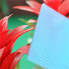 Decoration Materials roofing sheet 100% new meterials frosted hollow polycarbonate sheet