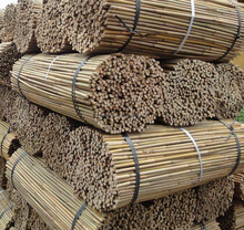 Nursery Bamboo Stakes dia.6-8mm,60cm