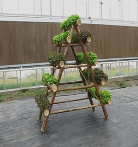 China factory bamboo flower plant rack/stand/shelf for garden support