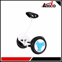 Big Power Adult Foot Electric Board Scooter Balance Bike Self Balancing